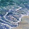 cynthia reid seafoam-1000wm